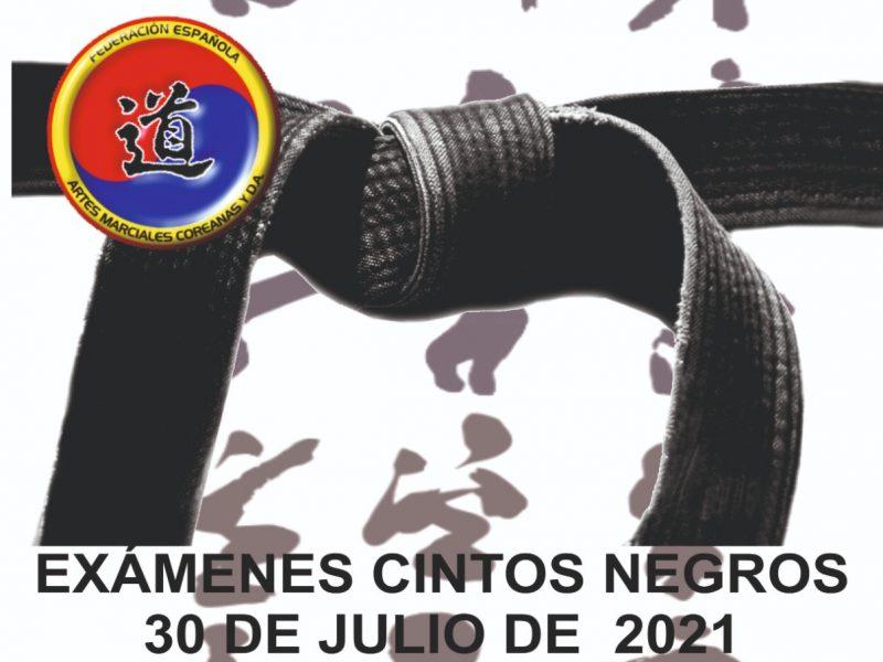 Exámenes cintos negros Julio 2021